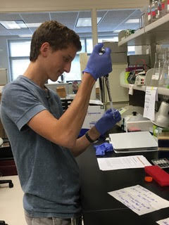 Adrian Scheibler: Cancer Research, Final Weeks (Five and Six